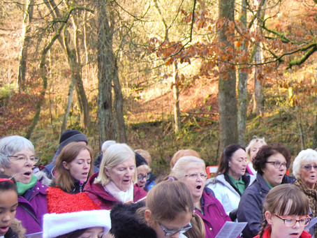 Carols in the Wood