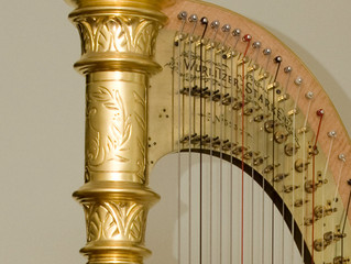 On Buying a Harp-An Introduction