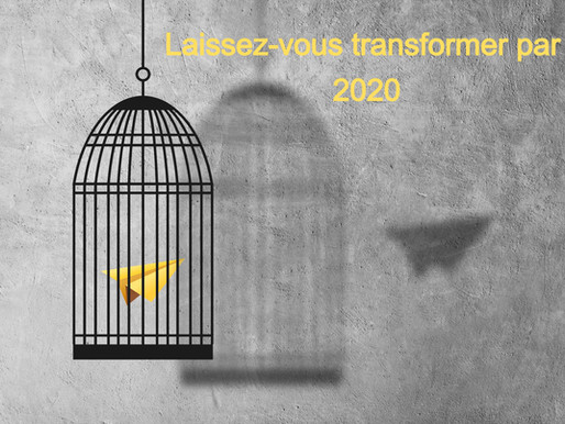 Capsule pédagogique: laissez-vous trans-former par 2020