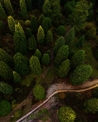 drone pics for website-2-4.jpg
