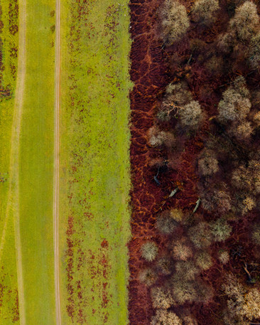drone pics for website-1-8.jpg