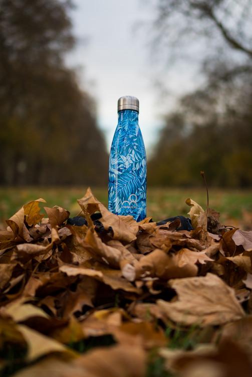 bottle_-34.jpg