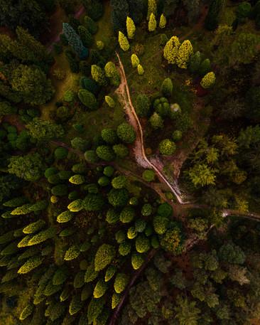 drone pics for website-1-6.jpg