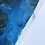 Thumbnail: Blue Orchid