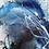 Thumbnail: Deep Blue Wonders... Set of Two