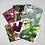 Thumbnail: Christmas ART CARD Pack of 6 Cards