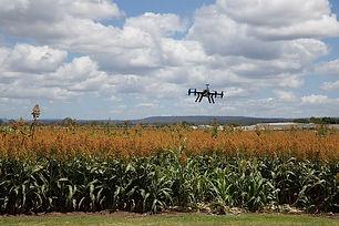 agriculture-3182252_640.jpg