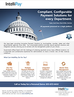 Intellipay-GT flier 2-2020.png