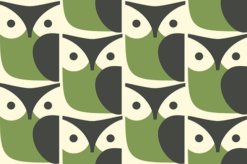 OWL CHALKY - GREEN