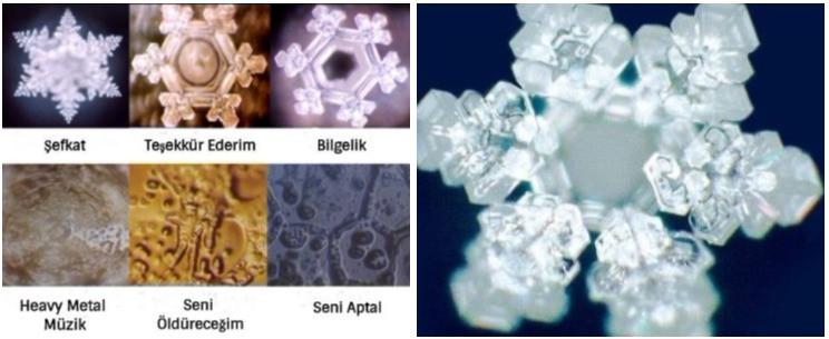 Masaru Emoto Su Kristalleri Deneyi