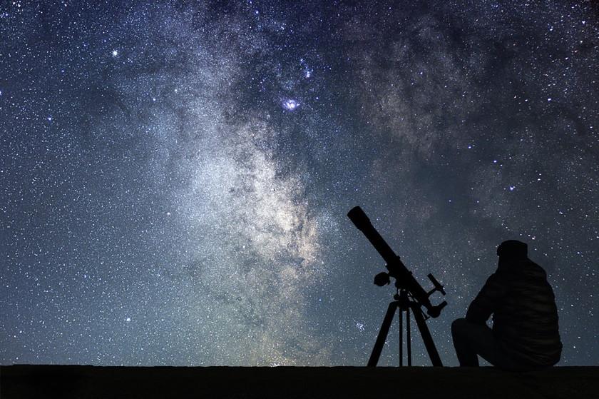 Evrende Yalnız Değiliz...