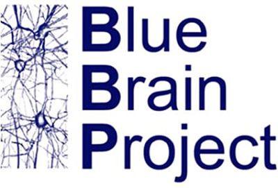 The Blue Brain Projesi