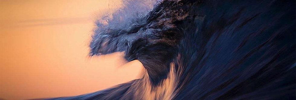 Firebird by Warren Keelan