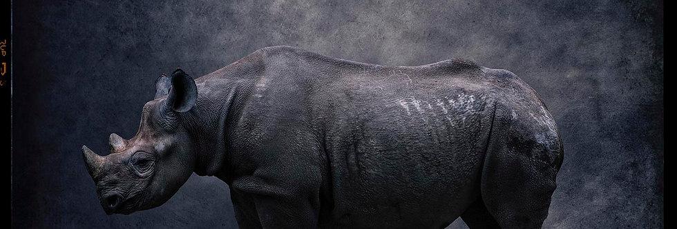 Big Boy No.3 by Dirk Karsten