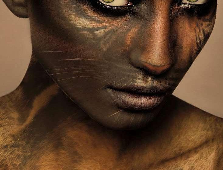 Savanna by ARTITECT