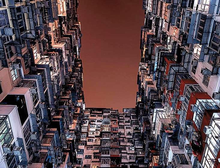 Urban Jungle (Portrait)