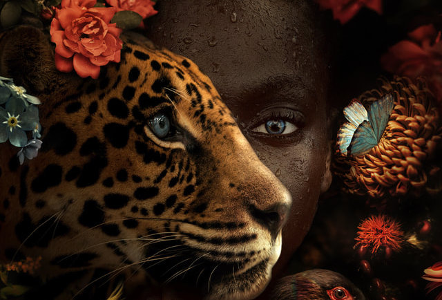 Safia by Marcel van Luit