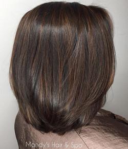 Soft Highlights, Haircut & Style!