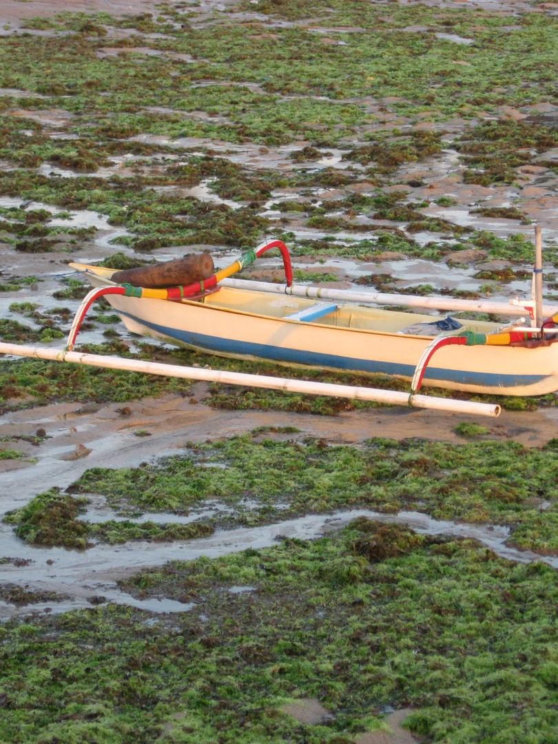 Boat - Indonesia