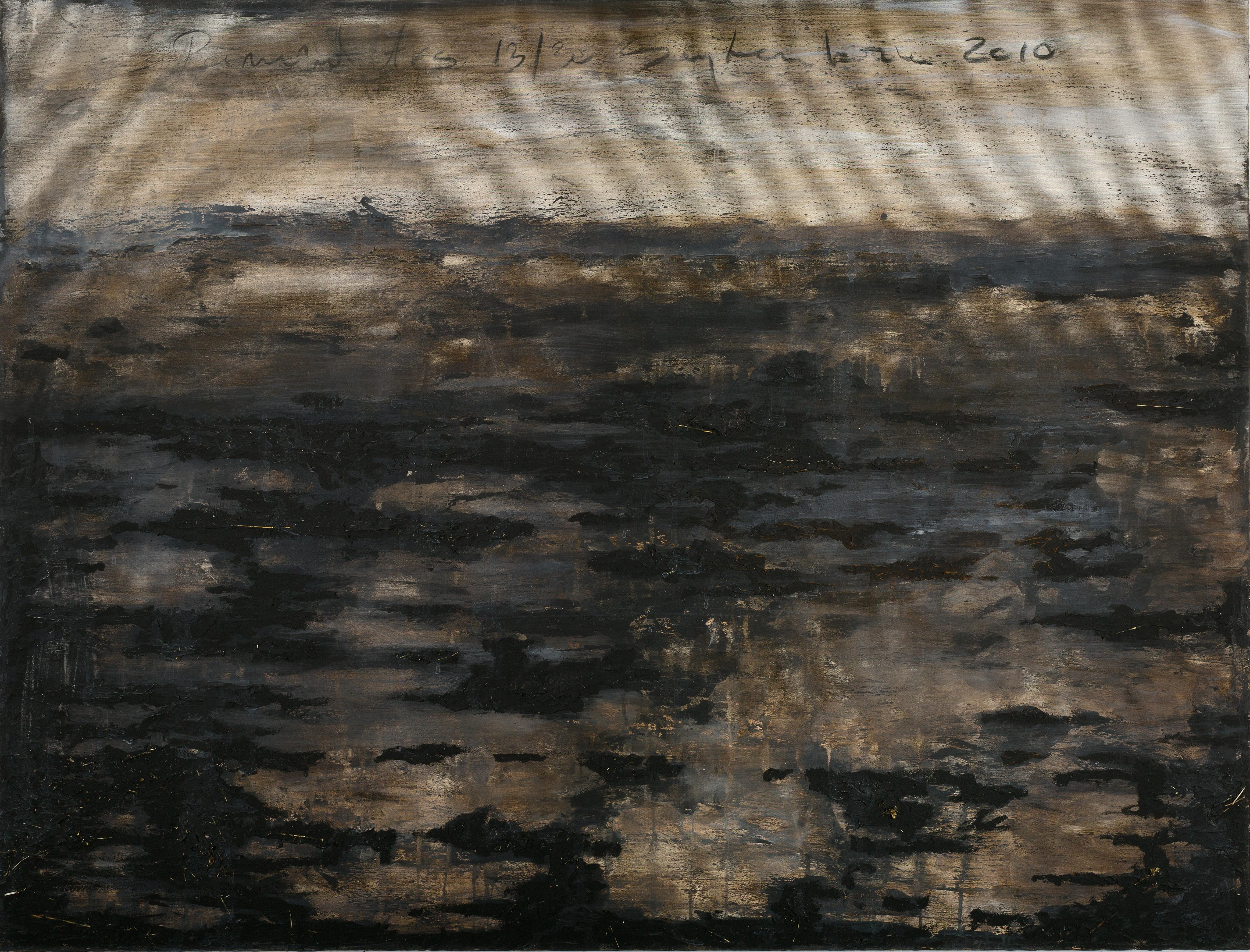 Cosmin Fruntes Ground 2010 Oil acrilic on canvas 100x130