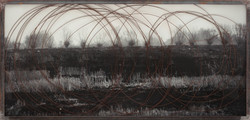 Cosmin Fruntes  Scorched field  print wire in metal frame whit glass  45 x 90 cm- an 2012- 2500euro
