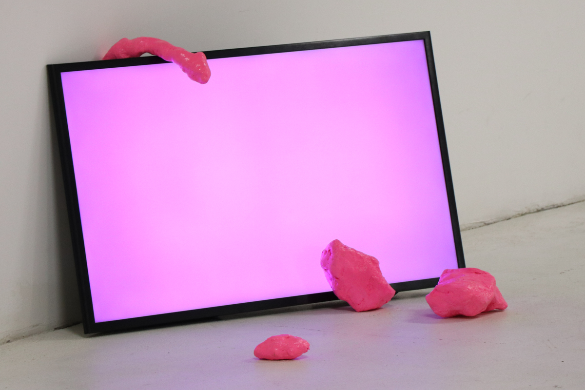 Pink Nightingale AQB_IK_(c)IsidoraK-8