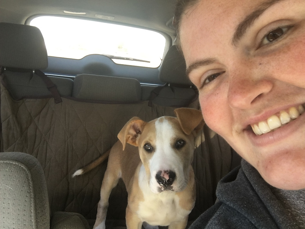 Loaded up in the car from the shelter and headed home!