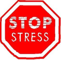 Zen No Stress Module 6H