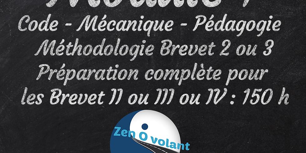 MODULE 1  BRUXELLES