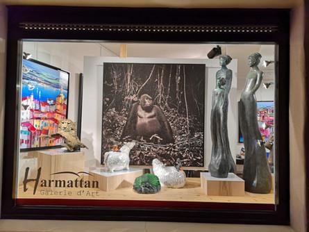 Galerie Harmattan à Megève