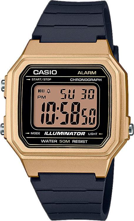 Часы Наручные CASIO W-217HM-9A