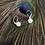 Thumbnail: Pendelperlenohrgehänge mit 8mm Perlen