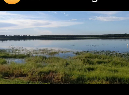 Good morning from Mill Dam Lake