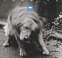 fragile-4.jpg