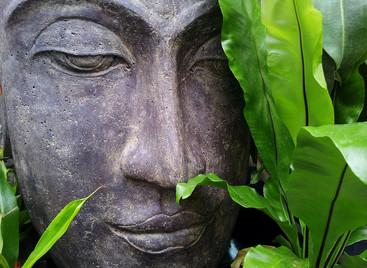 Rest. Deep, peaceful rest…