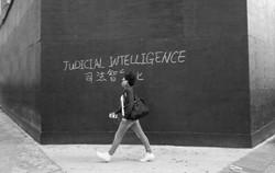 Judicial Intelligence
