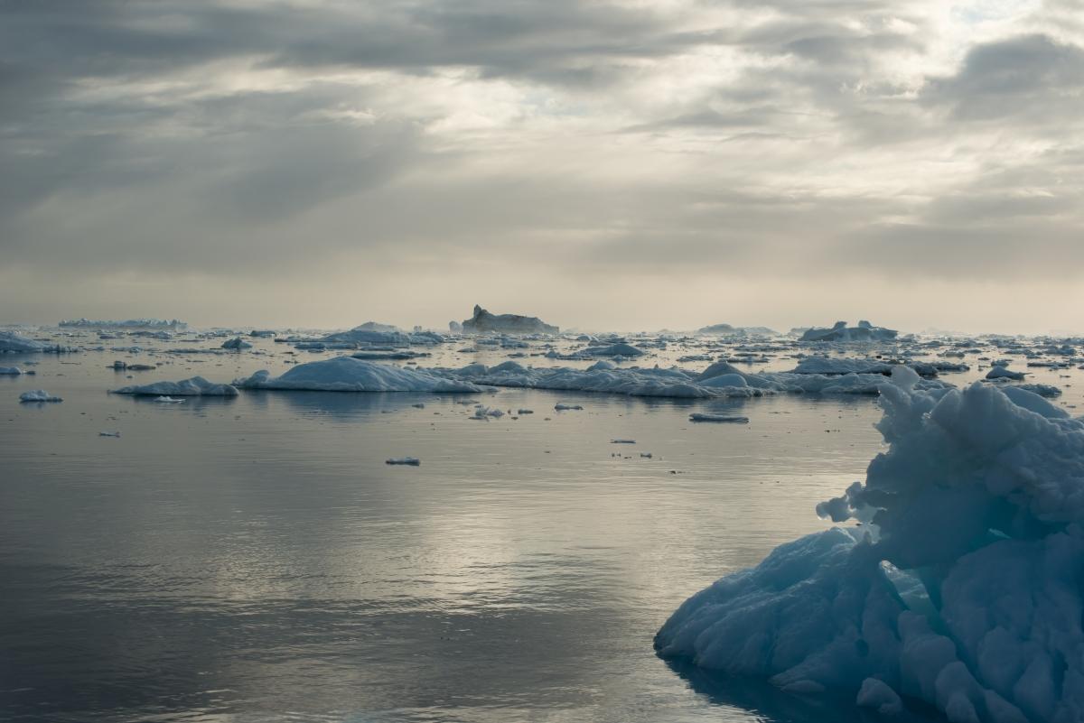 Greenland 100
