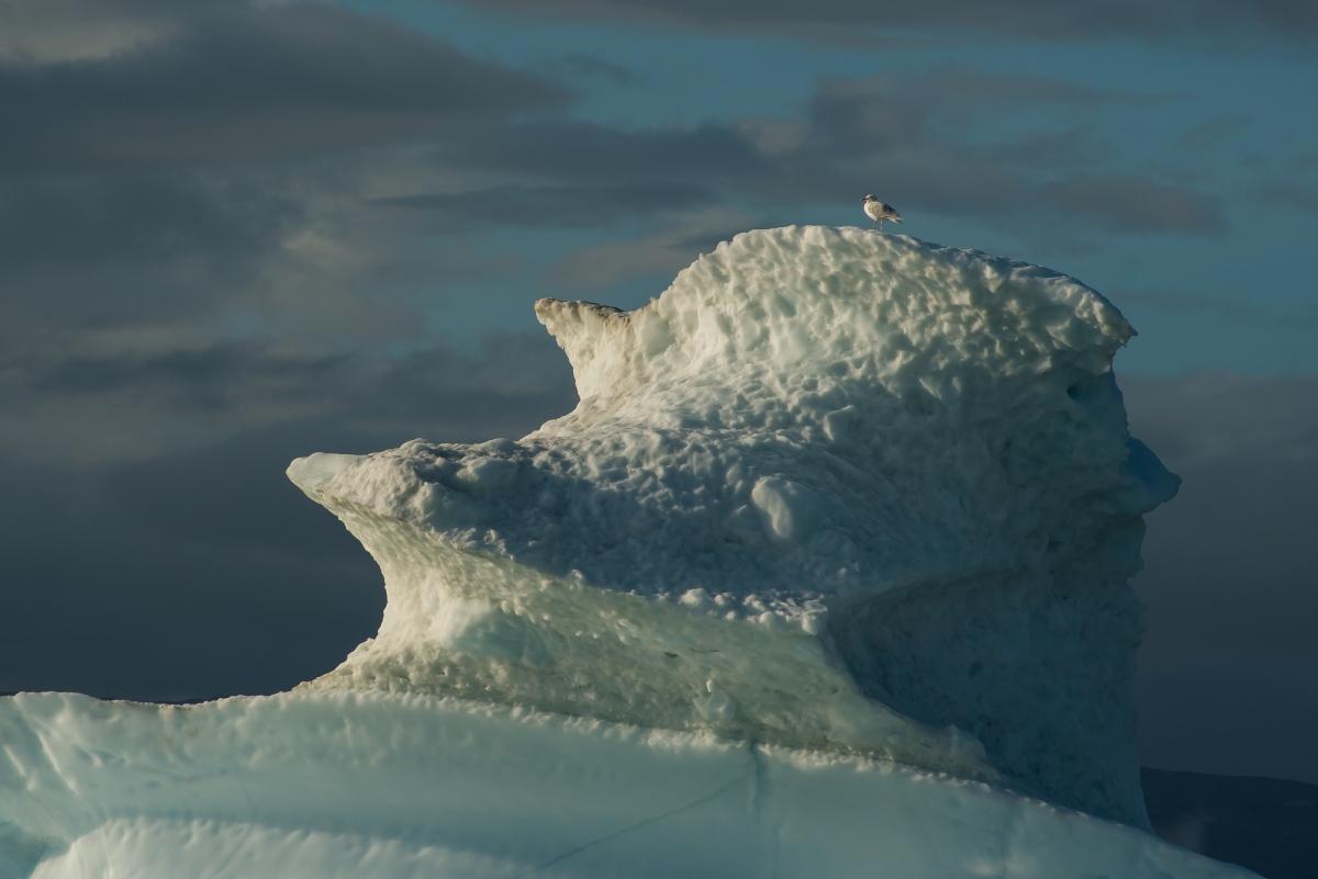Greenland 190