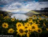 DSC_5919-Edit-Edit-Edit.jpg