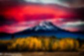 DSC_7823-Edit-Edit.jpg