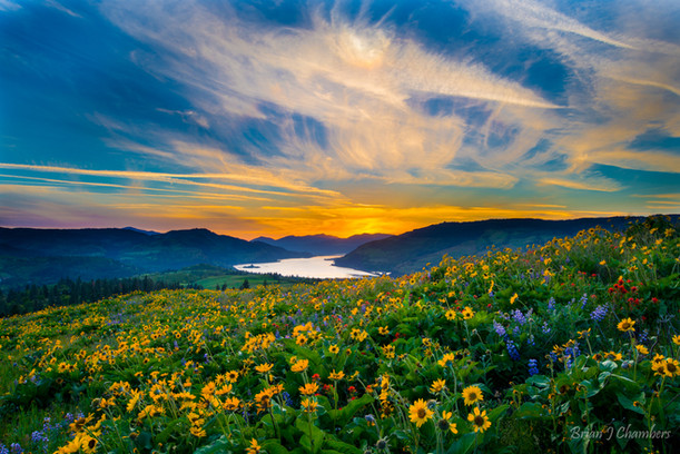 Memaloose Sunset