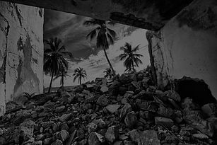 grayscale photo of rocks and palm trees_edited.jpg