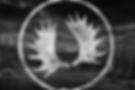 MHD / Caribou-Falcon