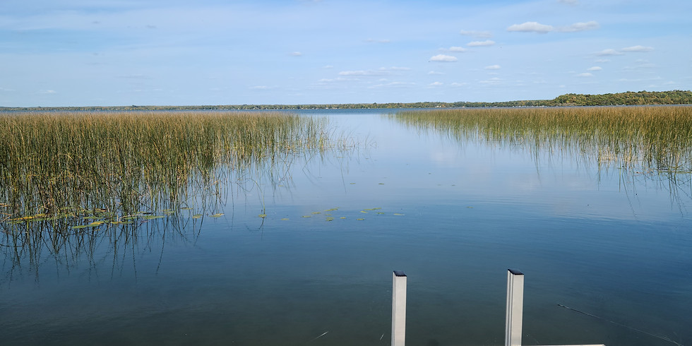 Water and Wood: Stories about the Lakes and Cabins of Otter Tail County