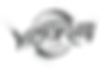 Victorum Logo Transparent.png