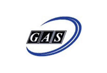 group 3_0001_GAs