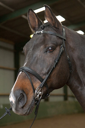 BR030 - 'Bit' Diamante Browband Bridle with Reins