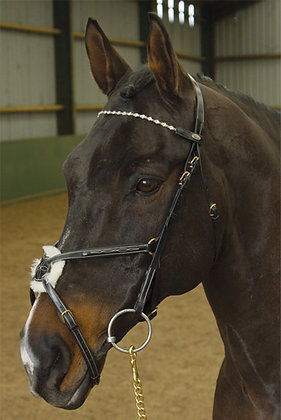 BB021- Chain Linked Diamanté Browband