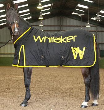 R048 - Whitaker Black & Yellow Stable Rug