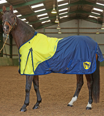 R034- Whitaker No Fill Turnout Rug